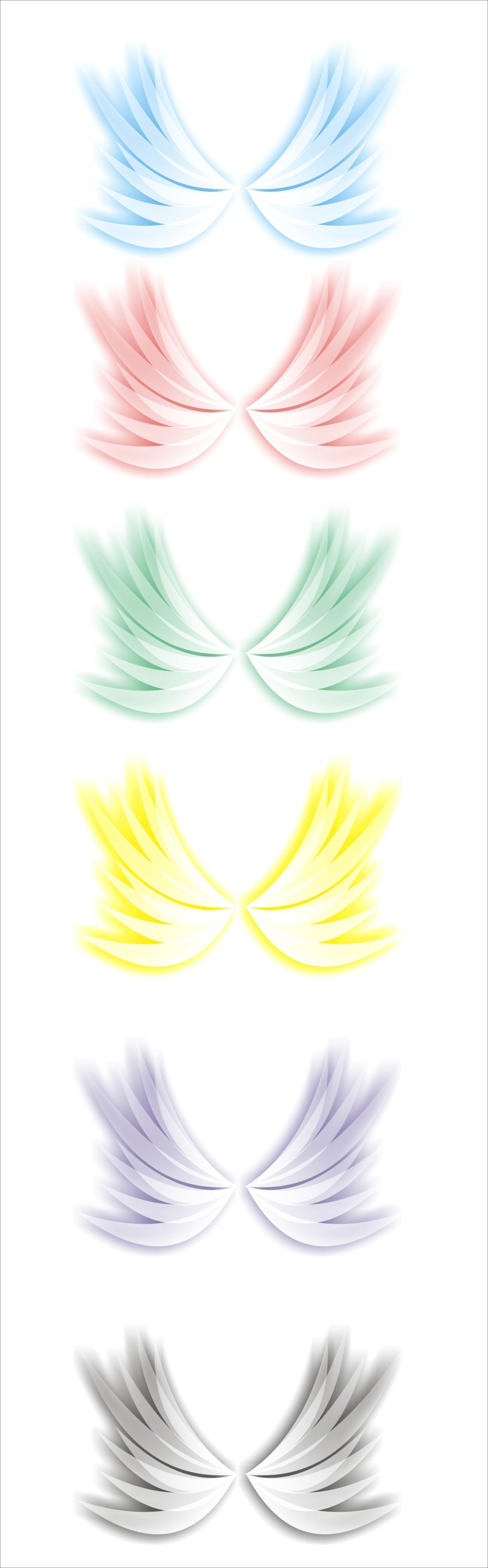 翅膀24[1].jpg